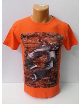 Yazı Baskılı Farklı Renkleriyle Erkek T-Shirt